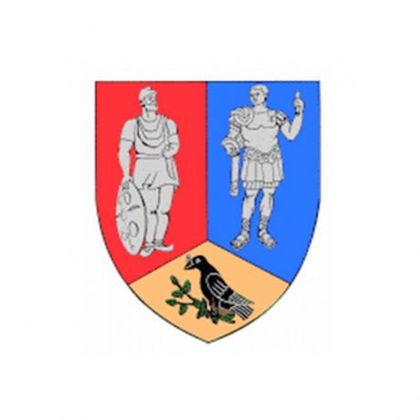 Hunedoara County Council