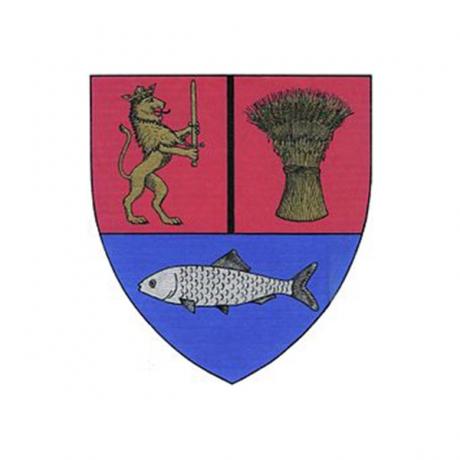 Dolj County Council